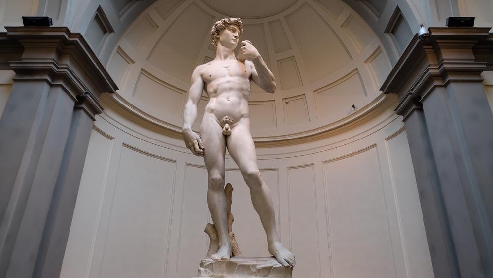 Il David di Michelangelo alla Galleria dell'Accademia di Firenze