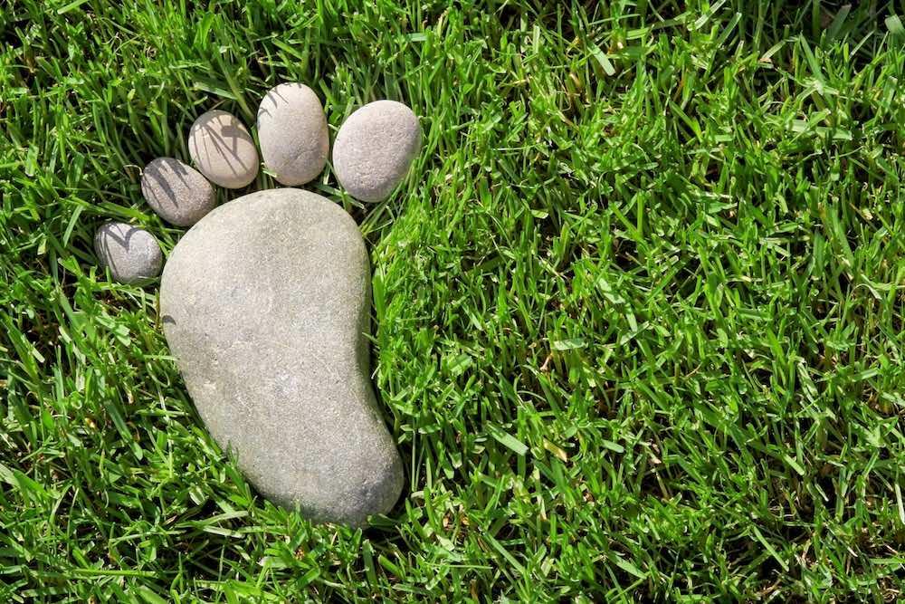 Rappresentazione grafica dell'indicatore Ecological Footprint o Impronta Ecologica