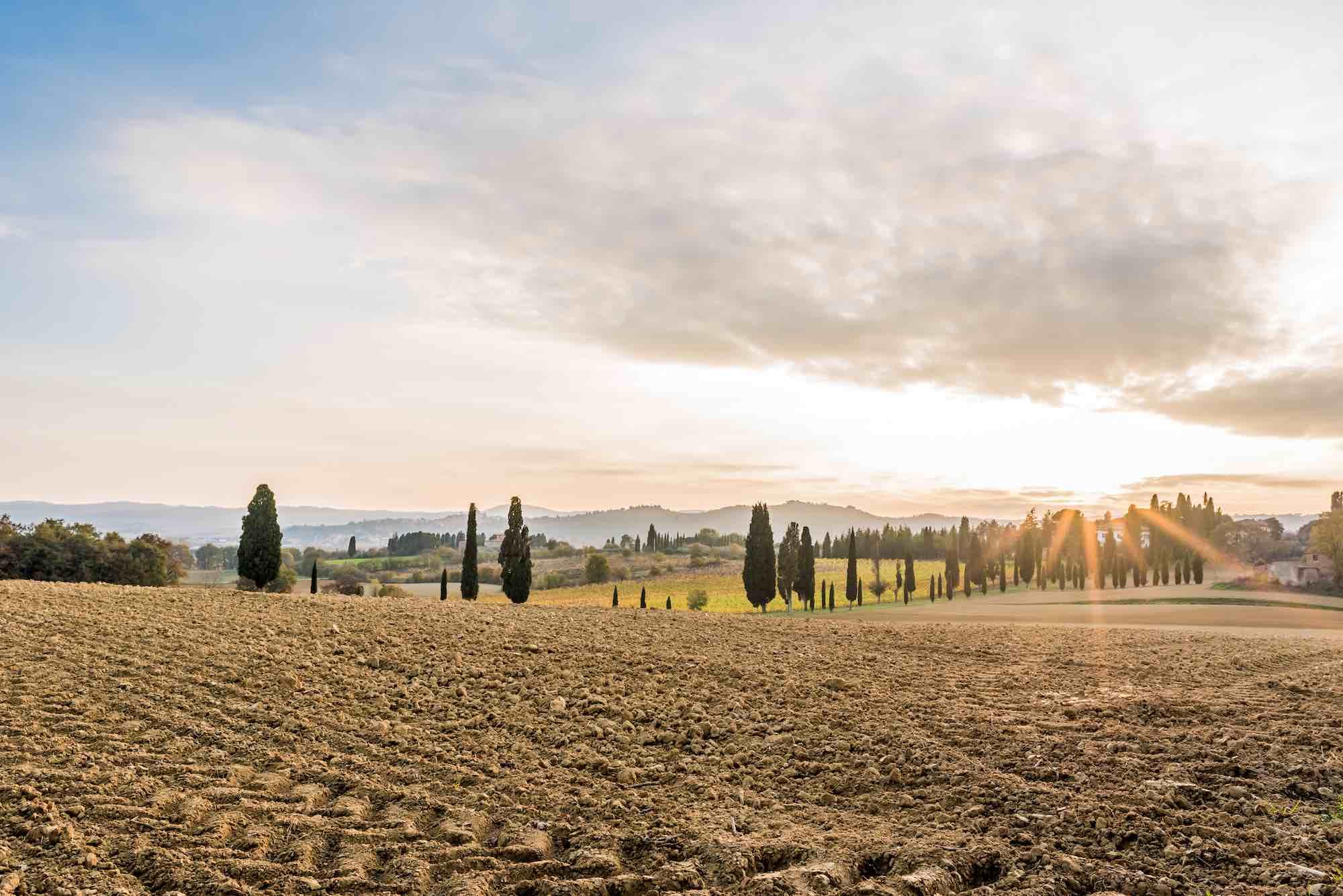 Tramonto in Valdichiana, nelle campagne vicino al borgo medievale di Lucignano