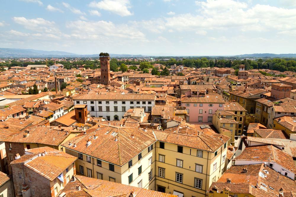 Tetti di Lucca con la Torre Guinigi