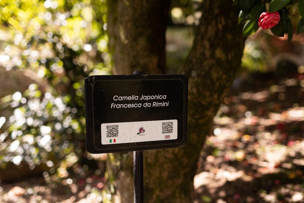 QR Code sulle piante dei giardini di Villa Reale di Marlia in provincia di Lucca
