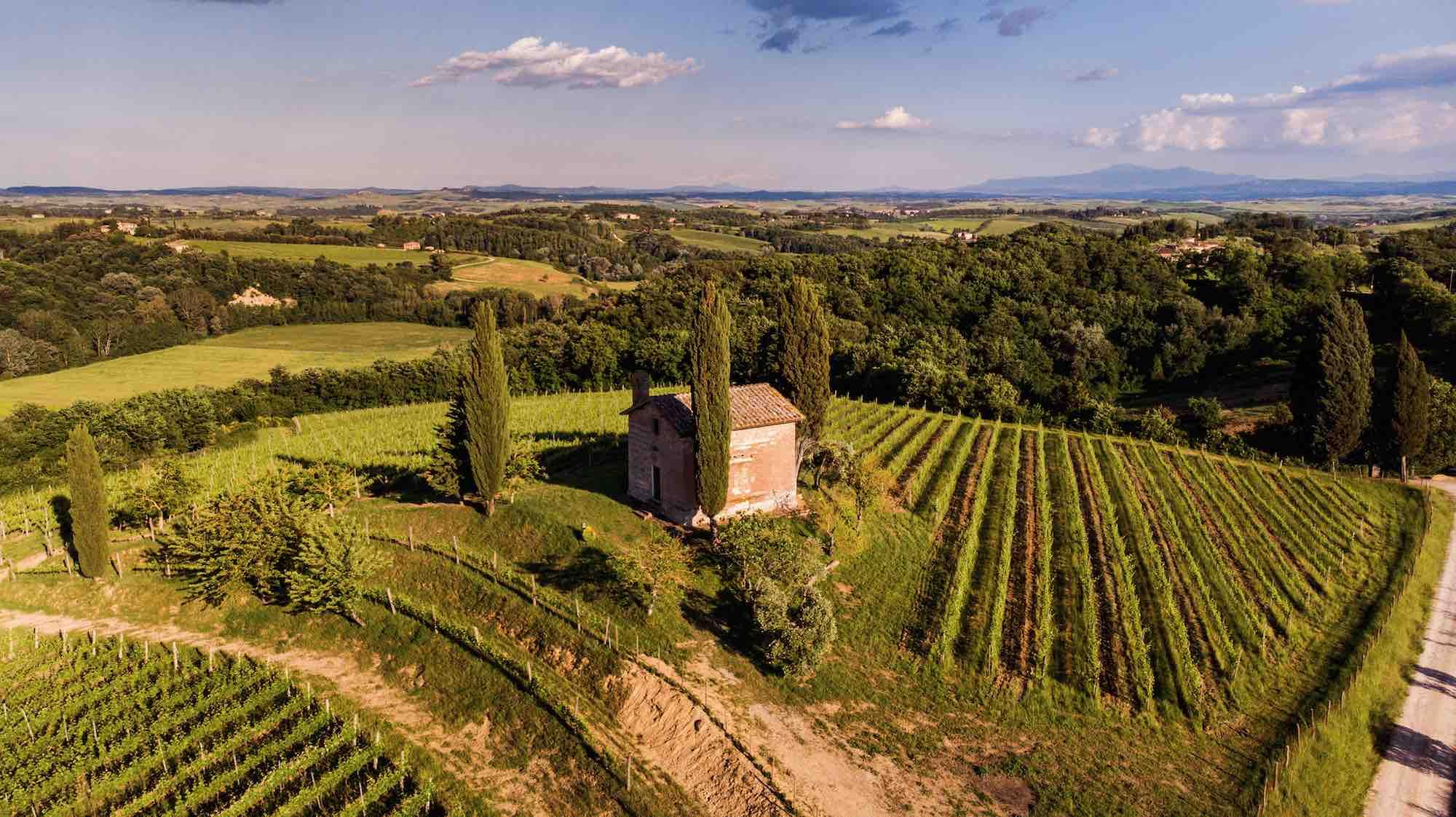 La chiesa simbolo dell'azienda vitivinicola San Giorgio a Lapi a cavallo tra Chianti Classico e Colli Senesi