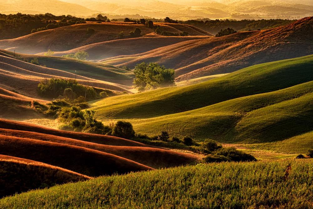 Colline vicino a Siena al tramonto nella zona di Torre a Castello