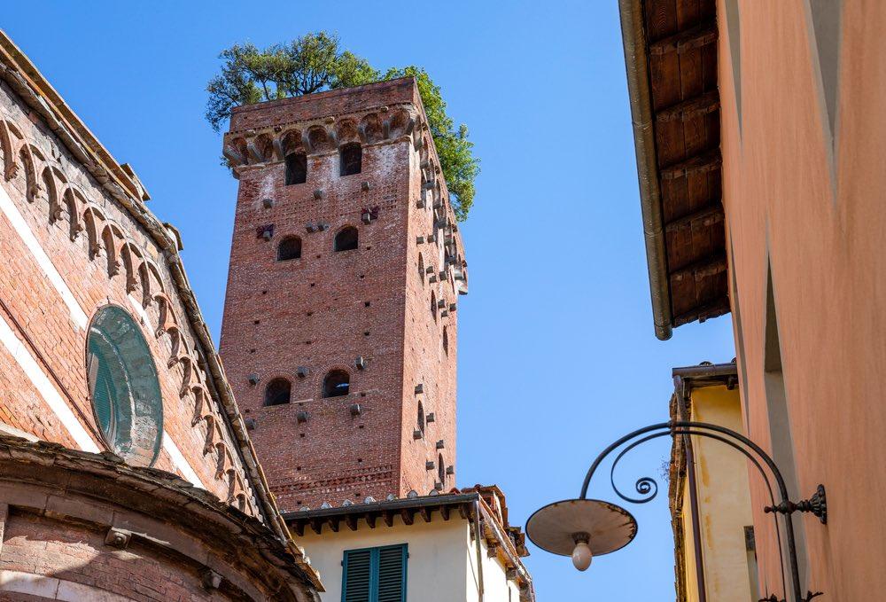 La Torre Guinigi, torre alberata nel centro di Lucca, in una giornata di sole