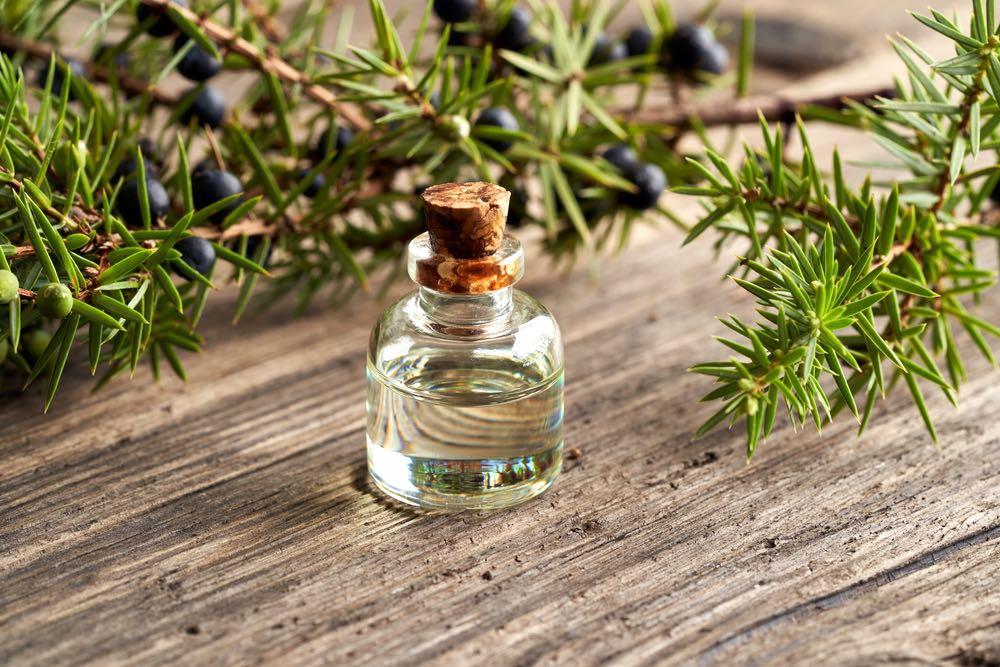 Bottiglietta di olio essenziale di ginepro con ramo verde e bacche