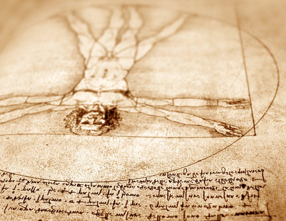 Riproduzione degli schizzi di Leonardo relativi all'Uomo Vitruviano