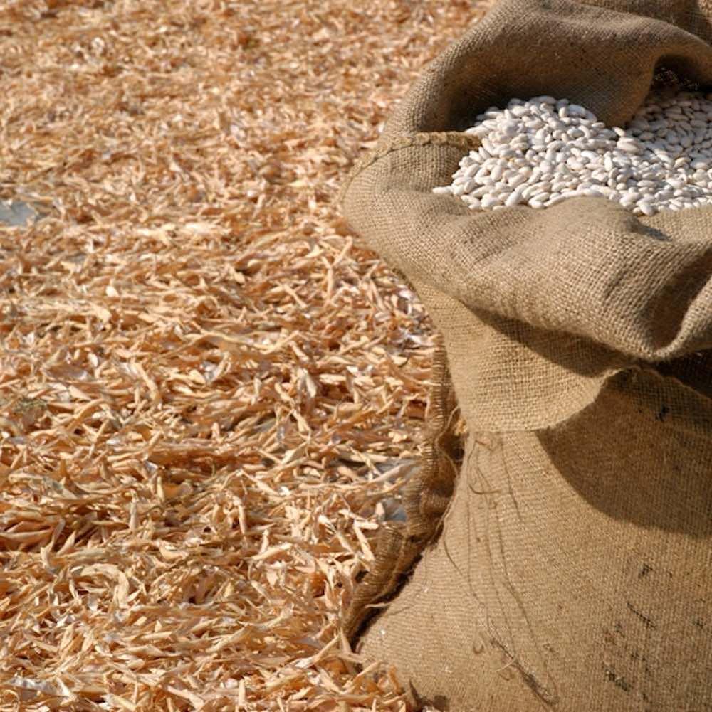 Sacco di iuta ricolmo di fagioli di Sorana IGP