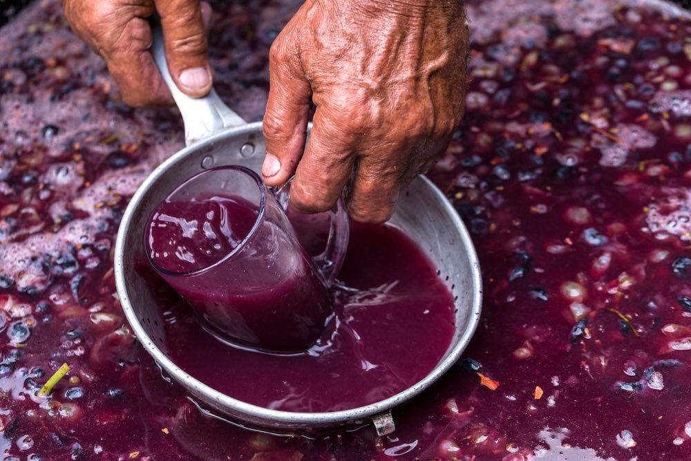 Assaggio diretto dal mosto di vino rosso