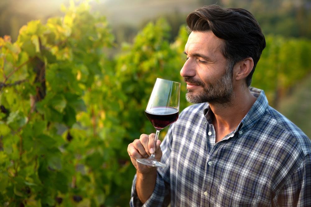 Uomo degusta un bicchiere di Chianti in mezzo alle vigne