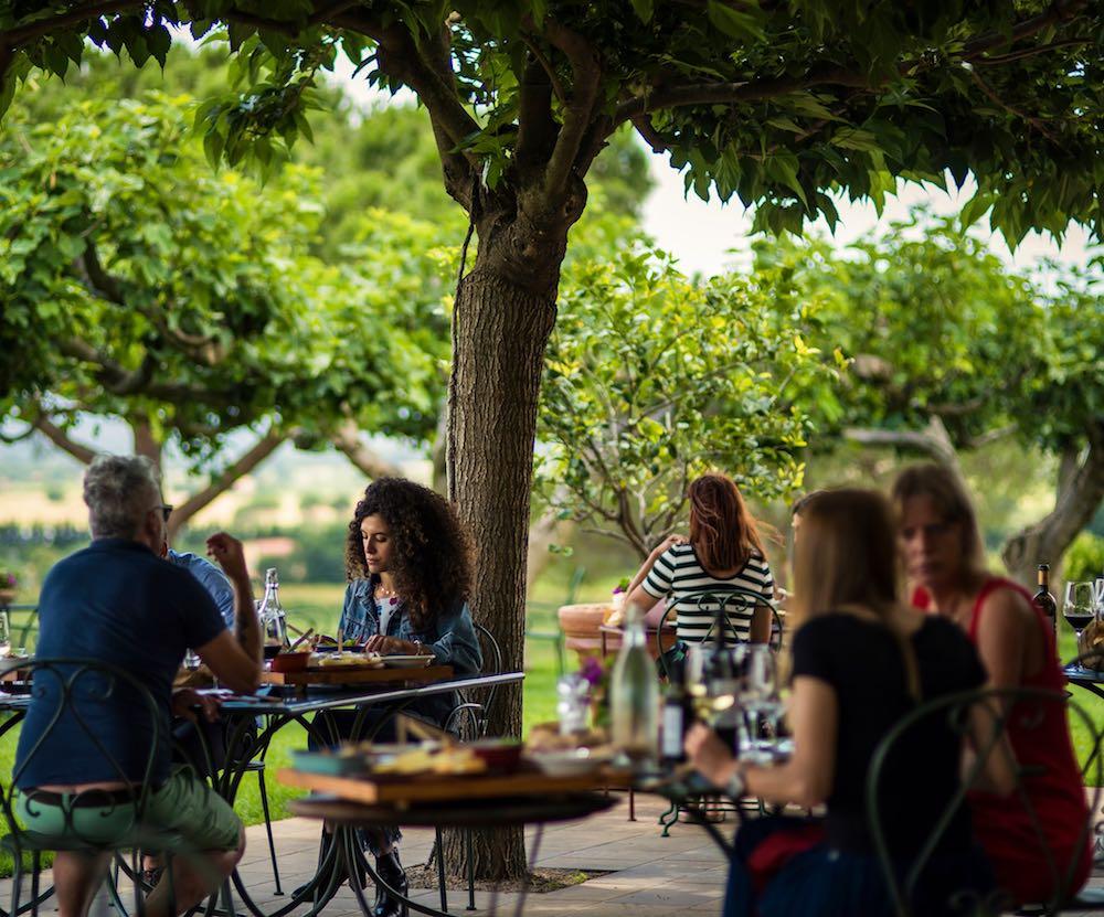Degustazioni di vino a Le Mortelle, Antinori, Maremma