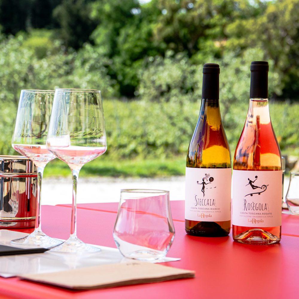 Degustazione di vino al Podere La Regola a Riparbella , Maremma toscana