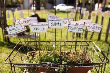 EvergreenForte 2021, mostra-mercato dedicata al giardino e a rarità botaniche