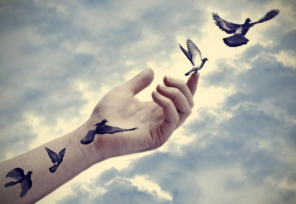 Uccelli tatuati su un braccio prendono vita