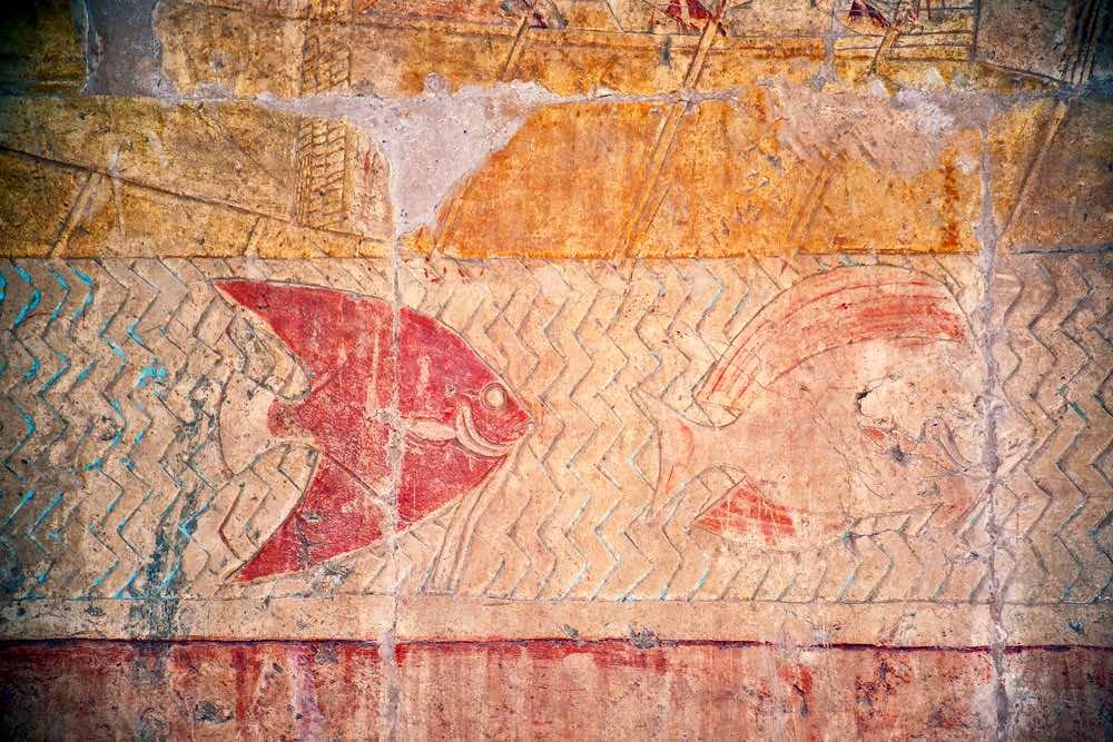 Rappresentazione di pesci nel Tempio di Hatshepsut nella Necropoli Tebana a Luxor, Egitto