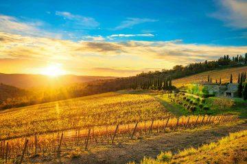 Le colline di Radda in Chianti in autunno